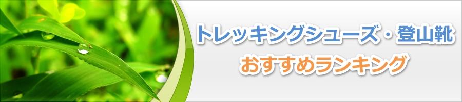登山靴キャラバン C1-02Sの評判 ...
